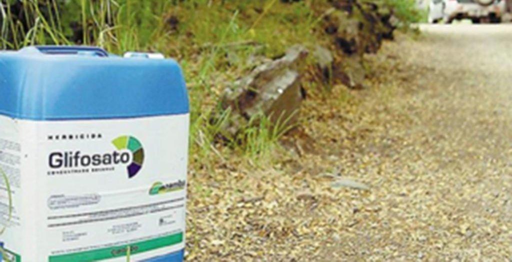Glifosato, le ricerche del Ramazzini pubblicate sull'Environmental Health Journal